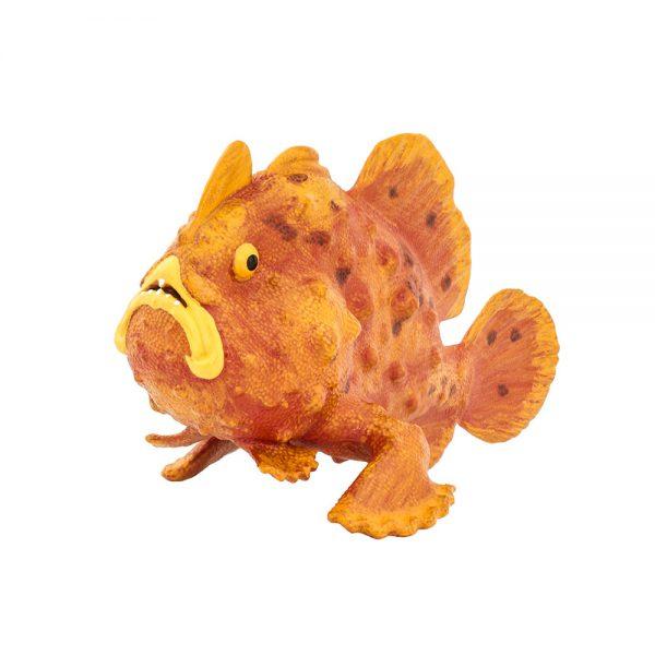 דג צפרדע