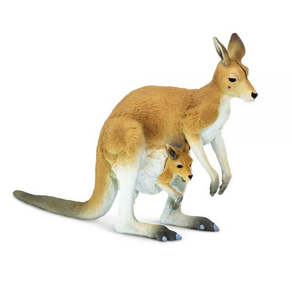 קנגורו עם תינוק