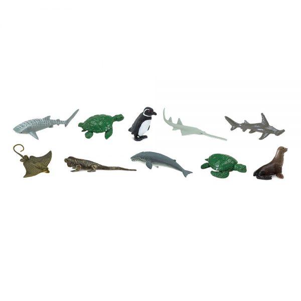 חיות ים בסכנת הכחדה