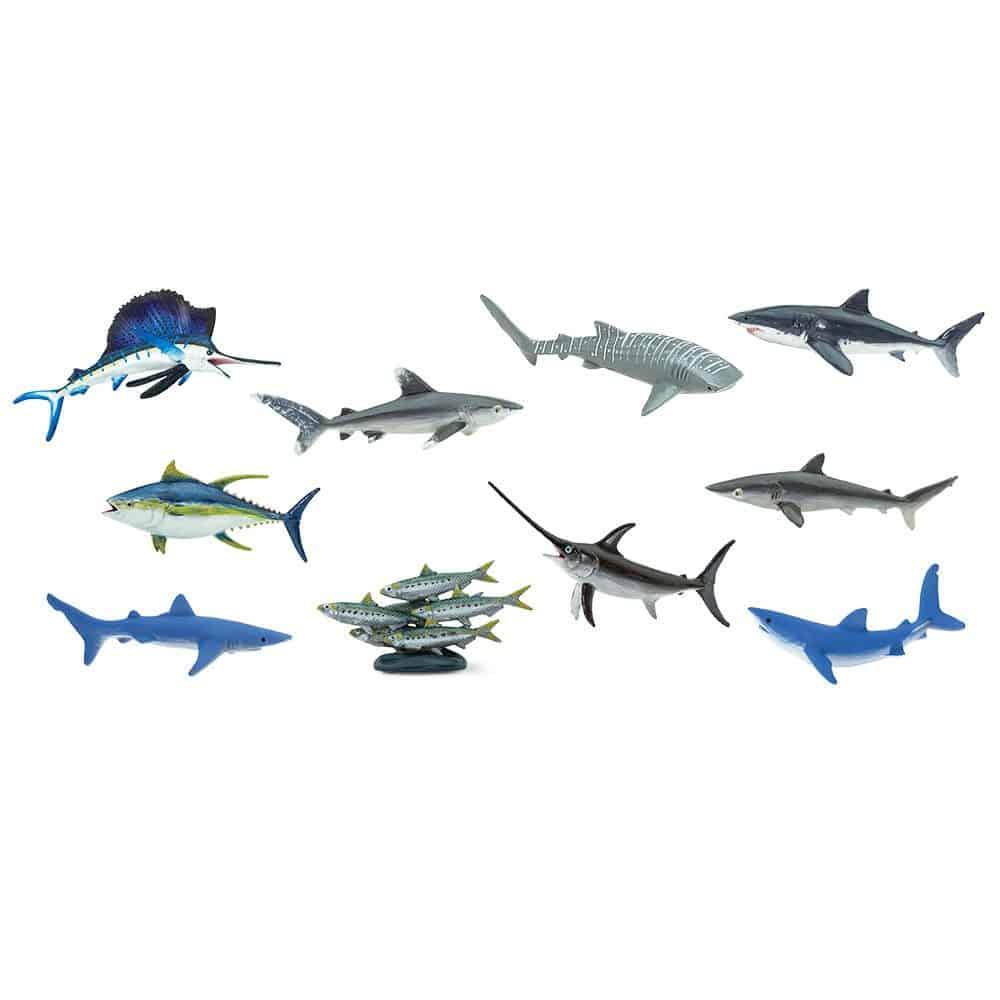 חיות הים הפתוח
