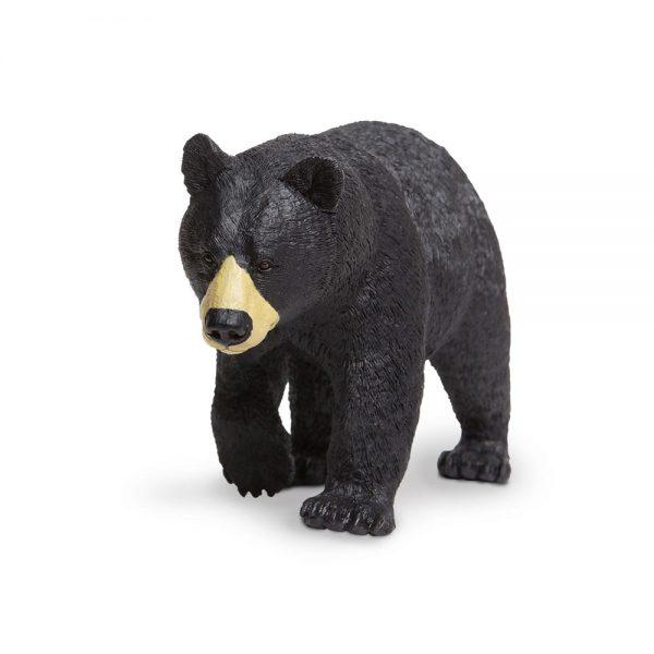 דוב שחור אמריקני הסדרה הגדולה
