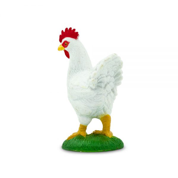תרנגולת
