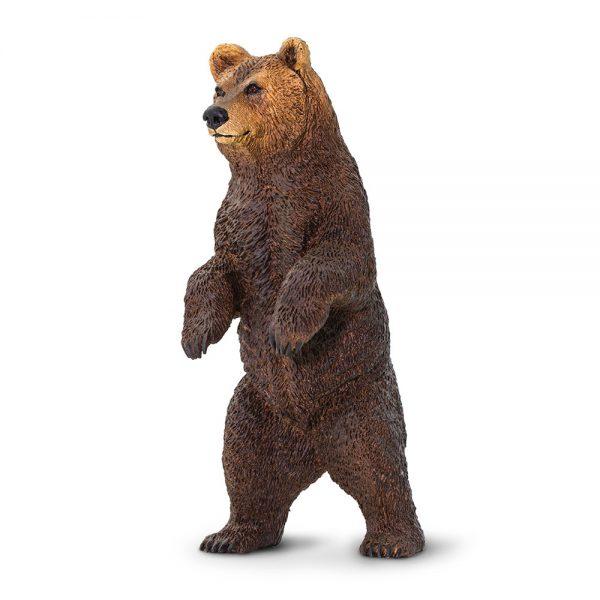 דוב גריזלי עומד על 2