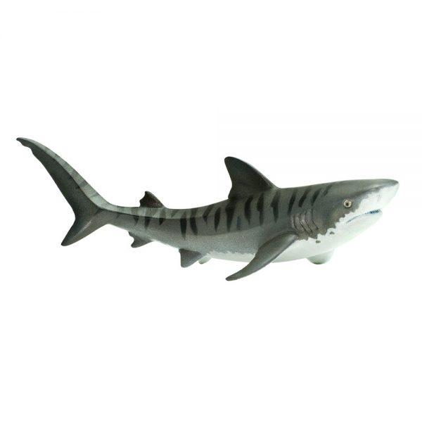 כריש טיגריסי