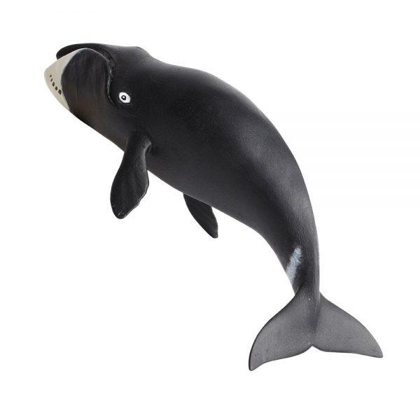 לוייתן