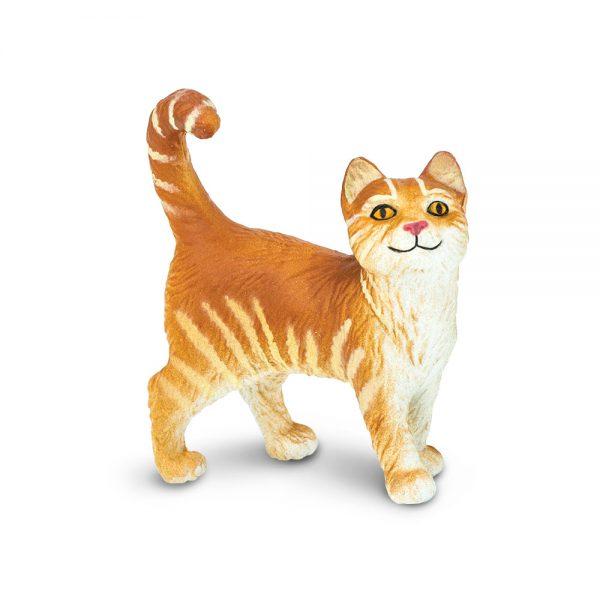 חתול טאבי