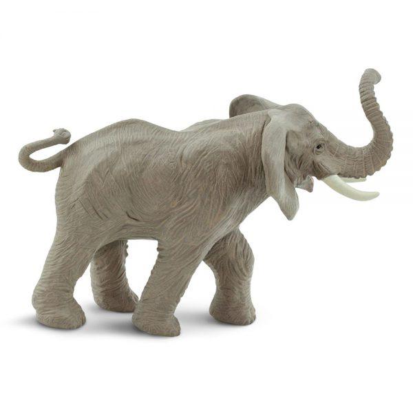פיל אפריקאי עם החדק למעלה
