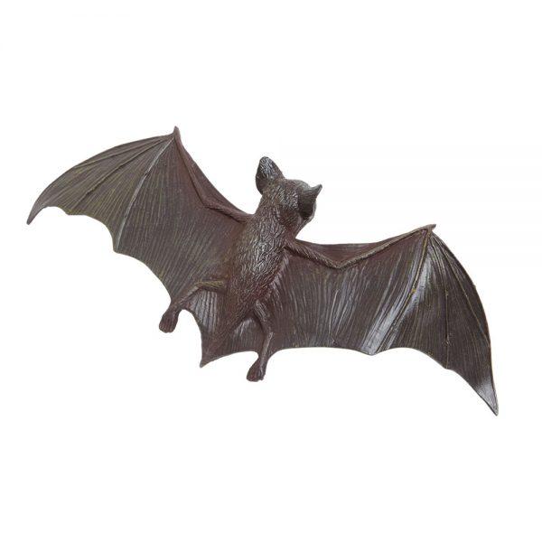 עטלף חום