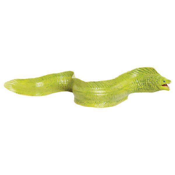 צלופח