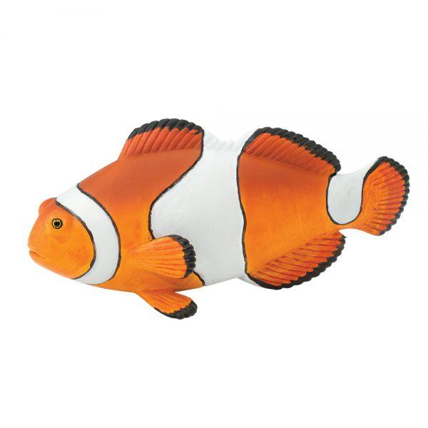 דג ליצן