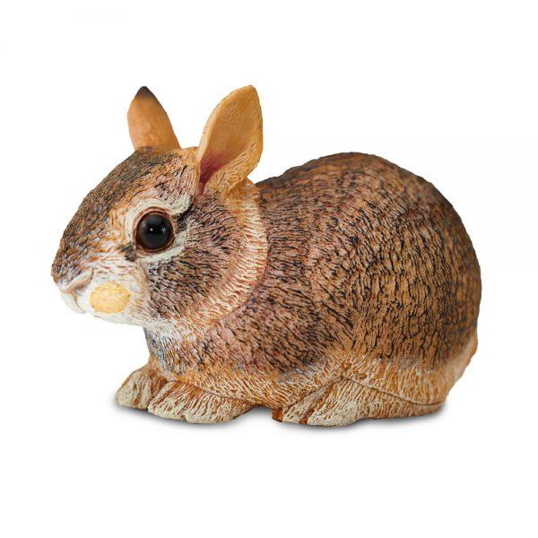 גור ארנבות
