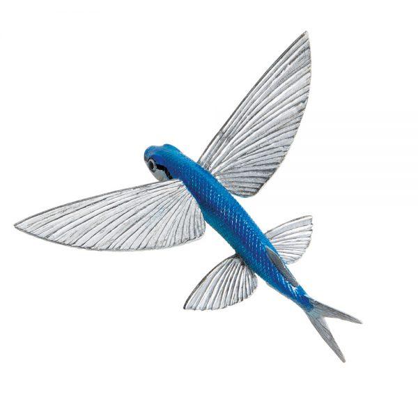 דג מעופף