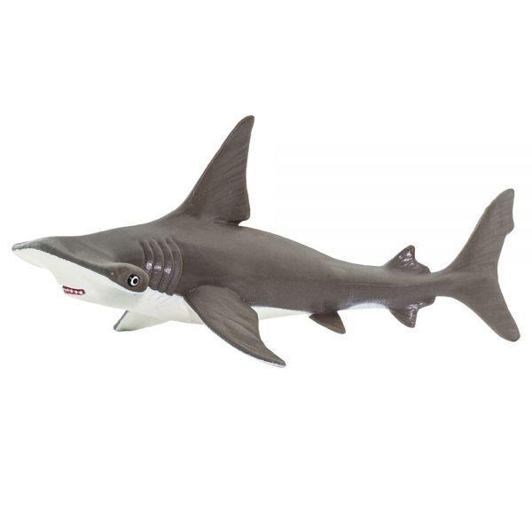 כריש פטיש