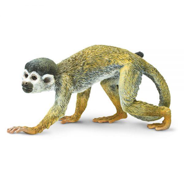 קוף סנאי
