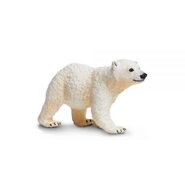 גור דוב הקוטב