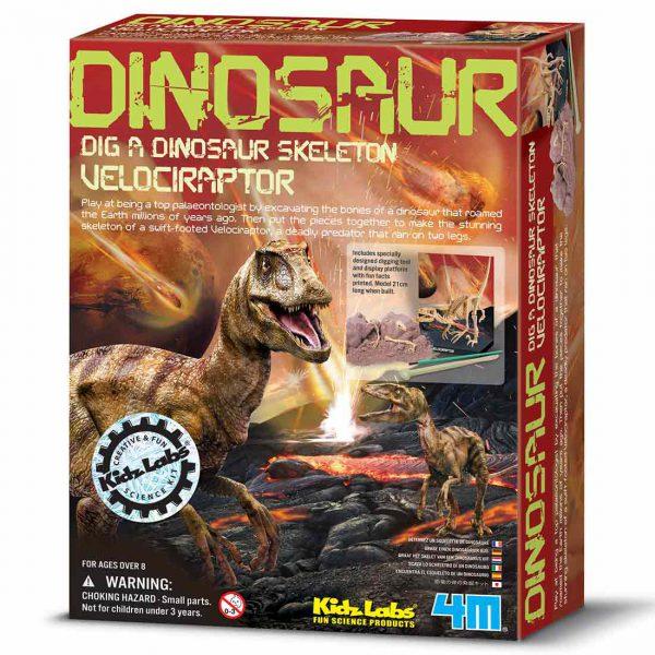 חפירת שלד דינוזאור ולוצירפטור אריזה