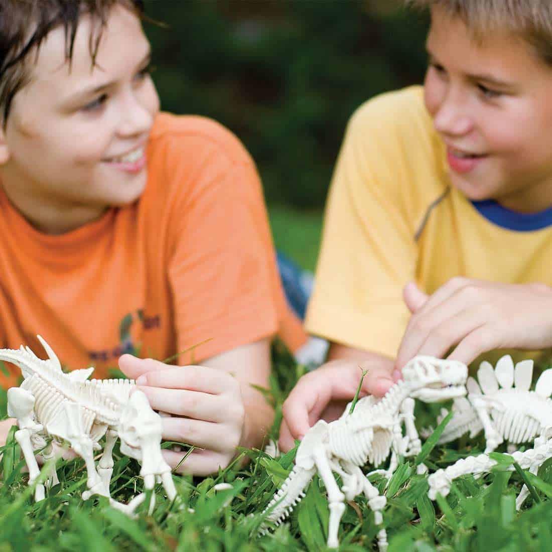 חפירת שלד דינוזאור טריצרטופס ילדים משחקים