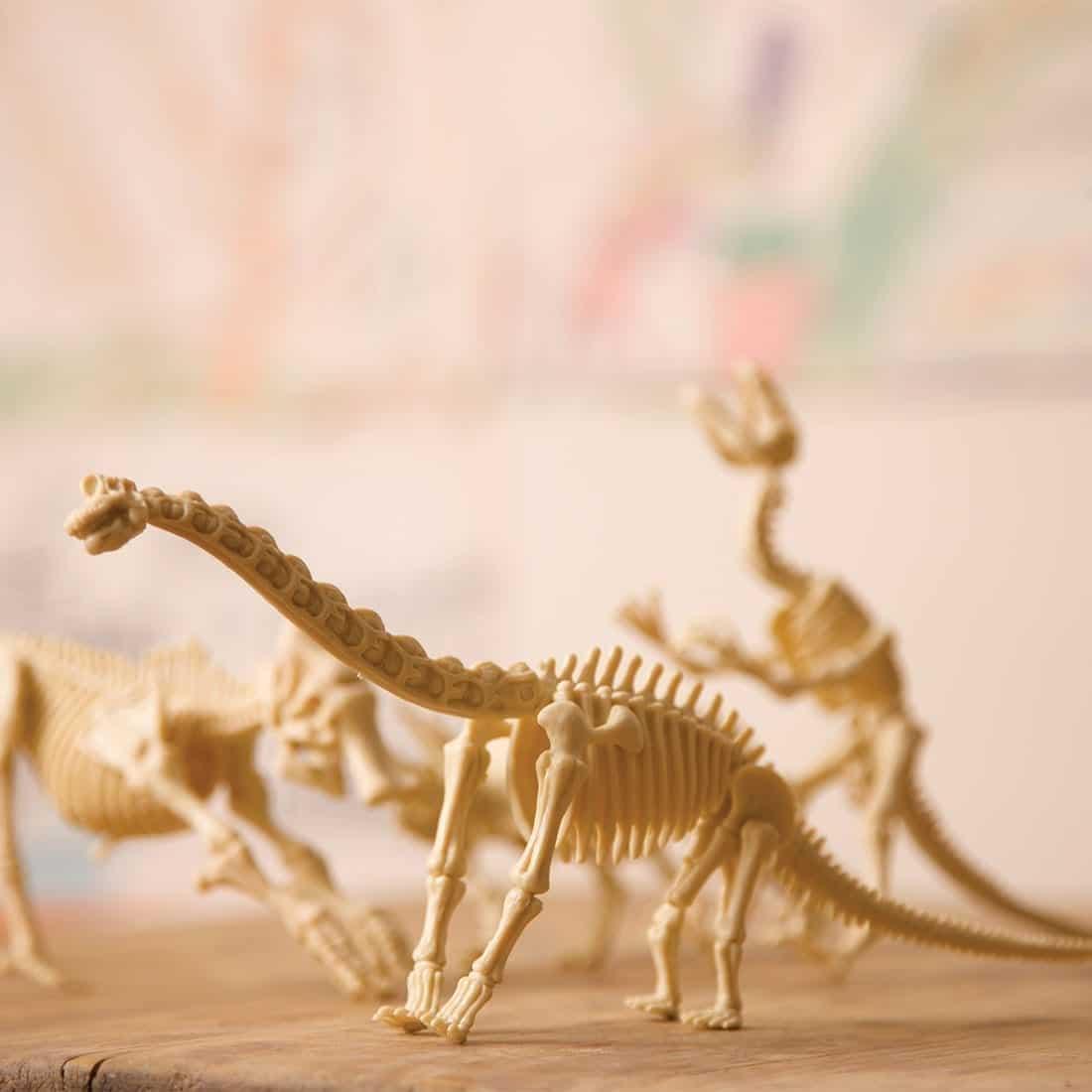 שלדי דינוזאורים