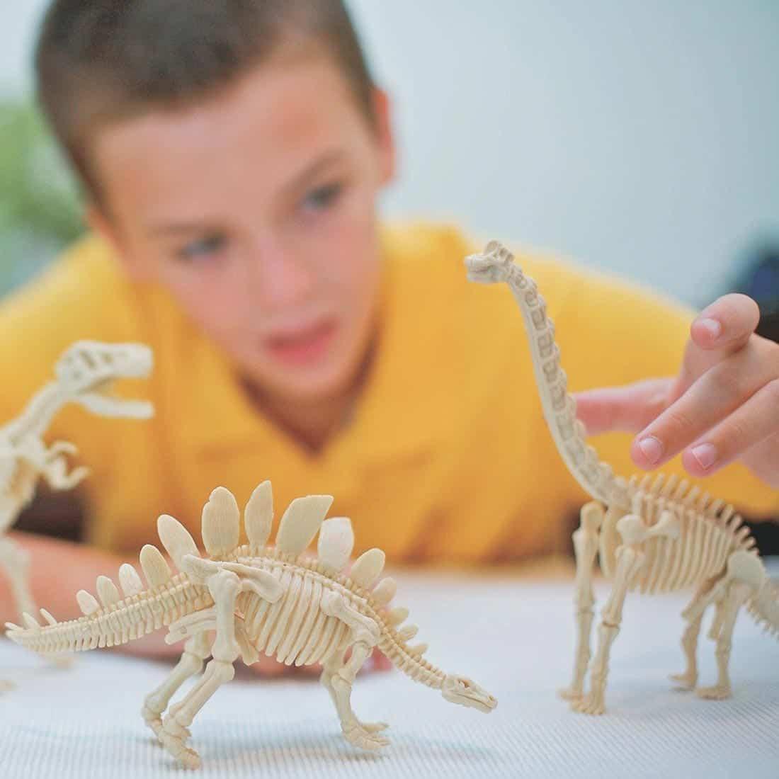 ילד משחק בשלדי דינוזאורים