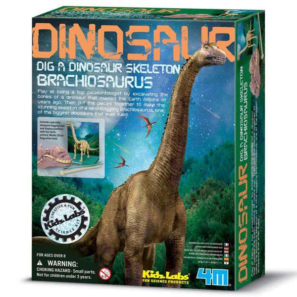 חפירת שלד דינוזאור ברכיוזאורוס אריזה