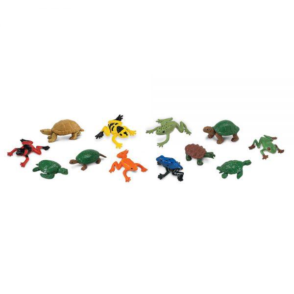 צפרדעים וצבים