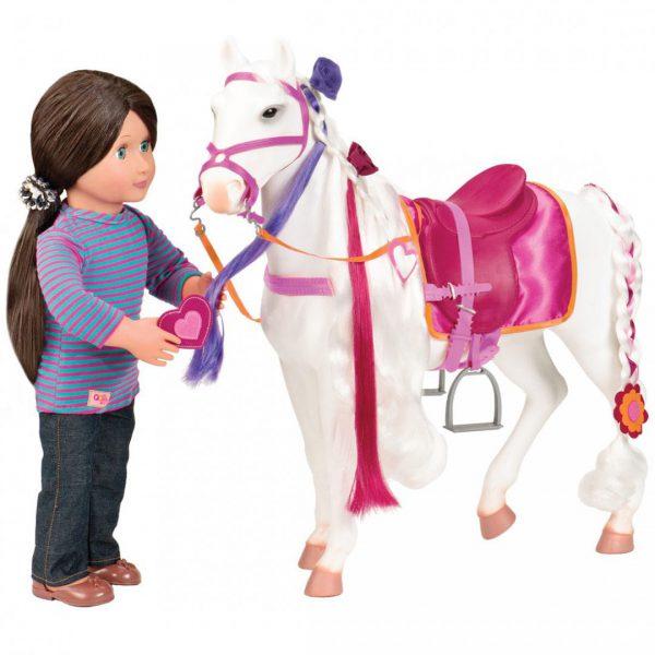 סוס קמרילו - Camarillo Horse
