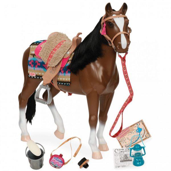 סוס ת'ורוברד - Thoroughbred Horse