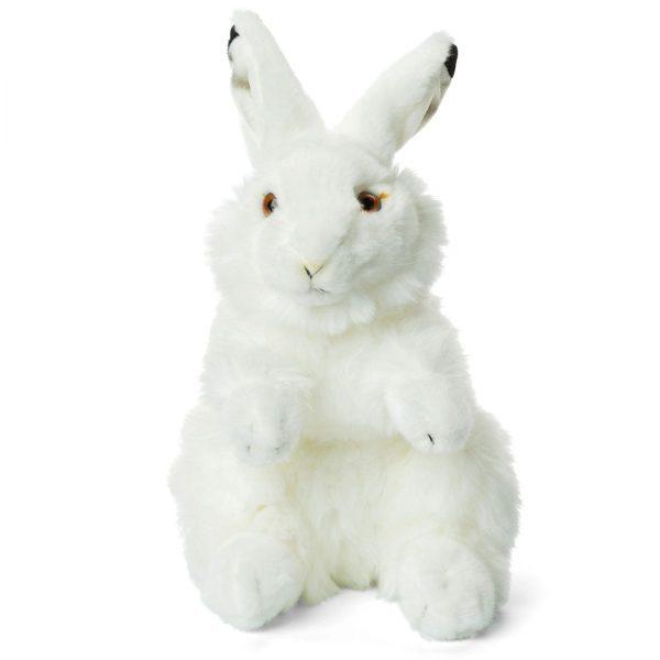"""ארנבת הקוטב 24 ס""""מ"""