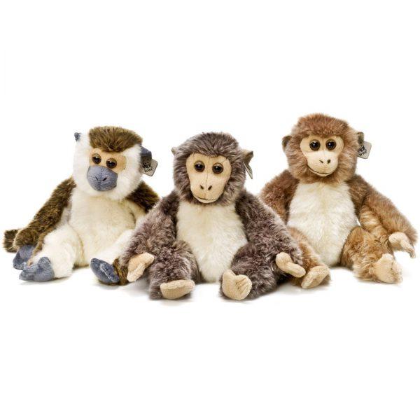 """גור קוף - שלושה סוגים - 23 ס""""מ"""