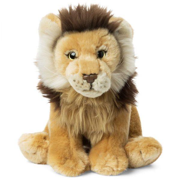 """אריה 23 ס""""מ"""