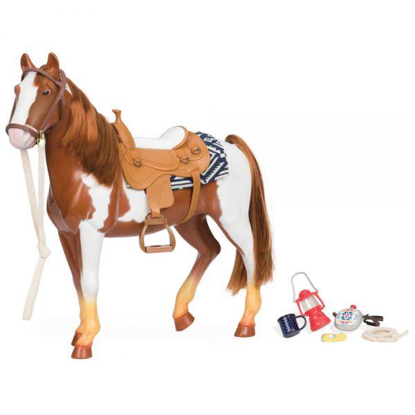 סוס רכיבה - Trail Riding Horse