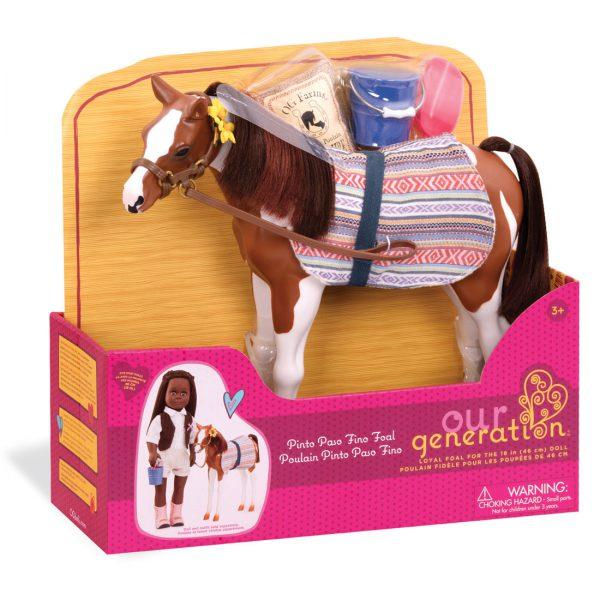 סייח פינטו - Pinto Paso Fino Foal